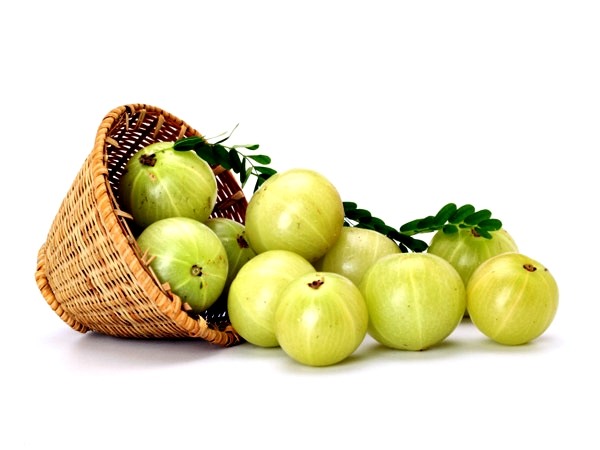 ayurvedic_benefits_of_the_amazing_amla